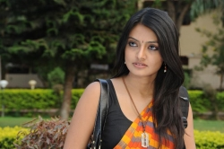 nikitha-narayan-latest-hot-photos-in-saree-162