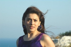 hansika-motwani-new-photo-collections_2423fdb8
